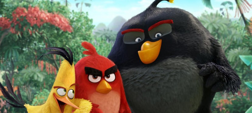 Angry Birds: trailer