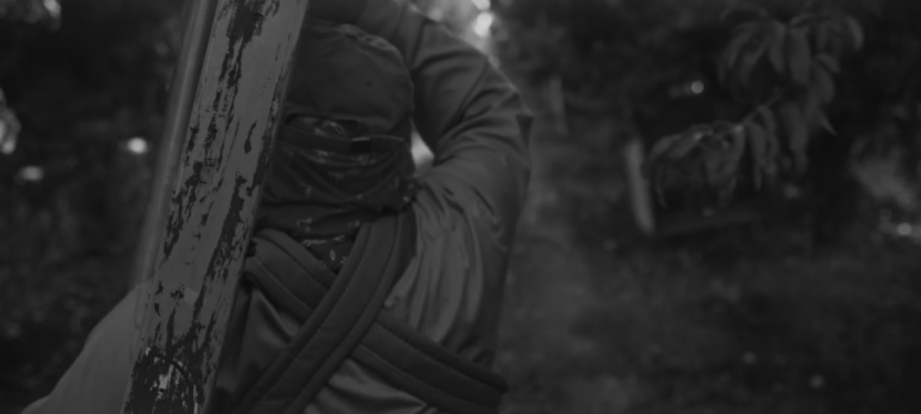Trailer: Lupe bajo el sol